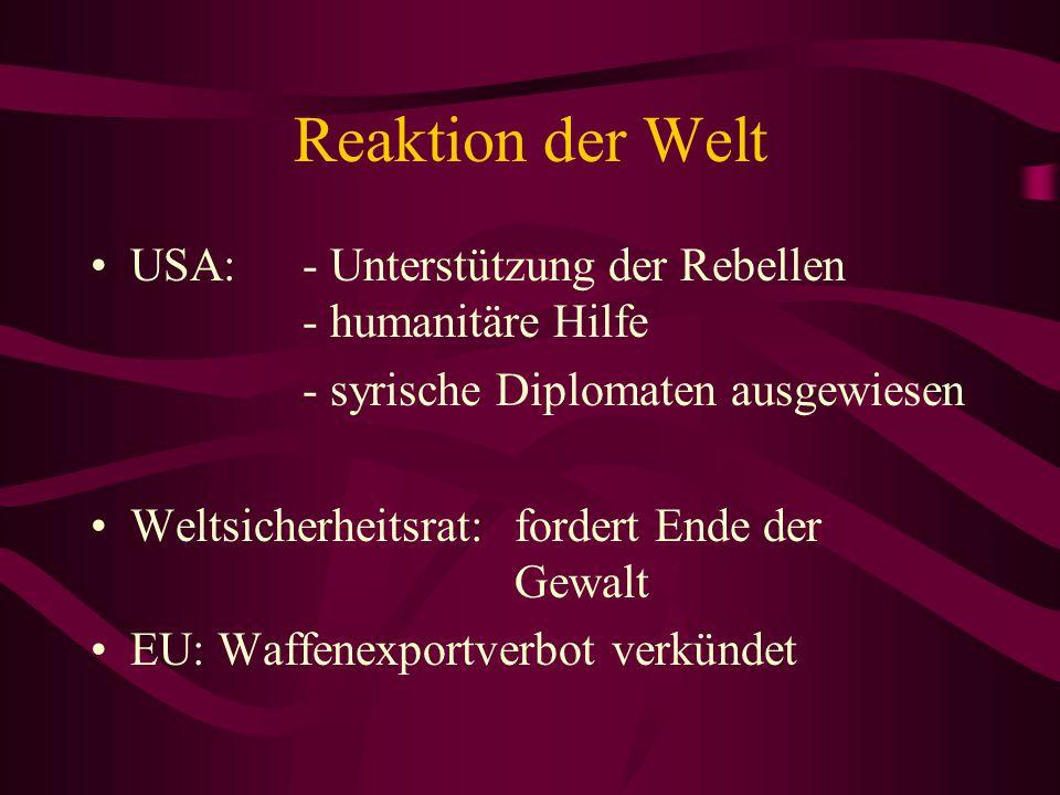 Reaktion der Welt USA: - Unterstützung der Rebellen - humanitäre Hilfe