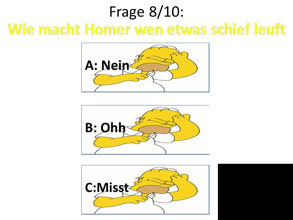 Wie macht Homer wen etwas schief leuft