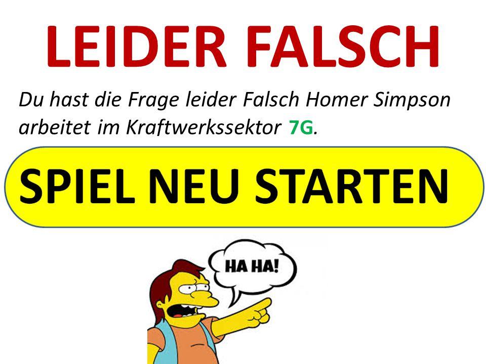 LEIDER FALSCH Du hast die Frage leider Falsch Homer Simpson arbeitet im Kraftwerkssektor 7G.