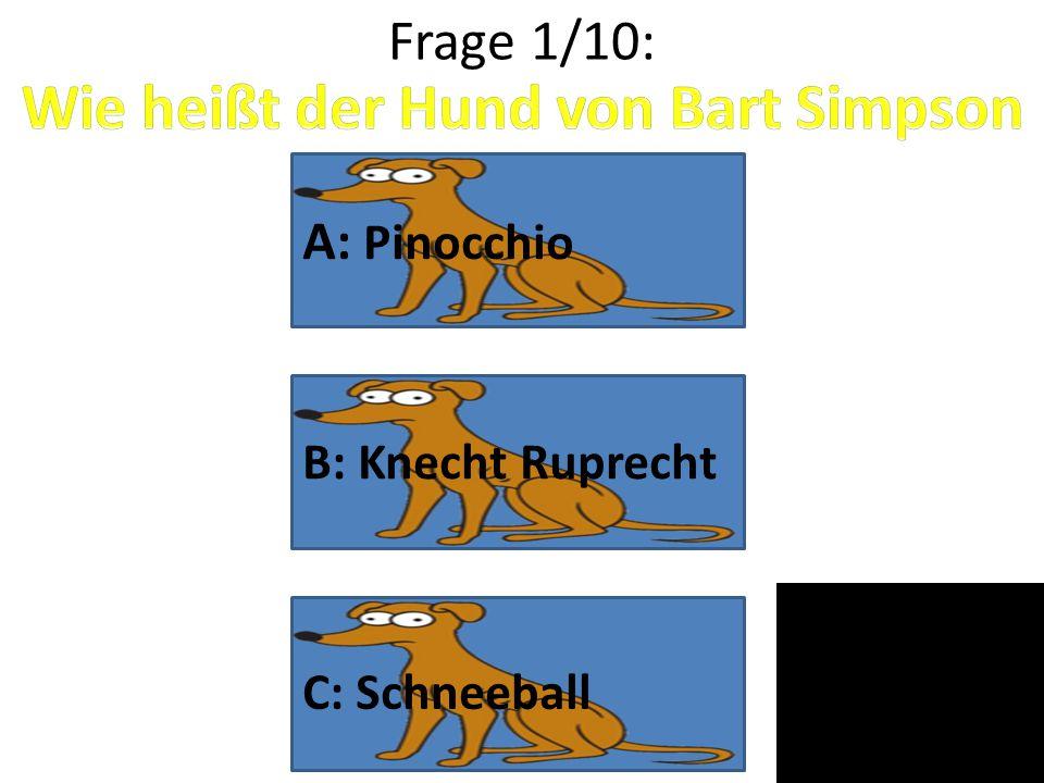 Wie heißt der Hund von Bart Simpson