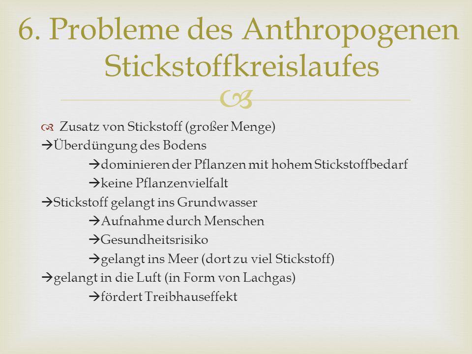 6. Probleme des Anthropogenen Stickstoffkreislaufes