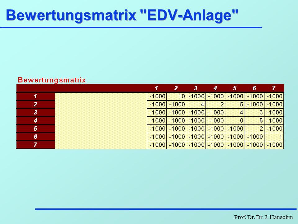 Bewertungsmatrix EDV-Anlage