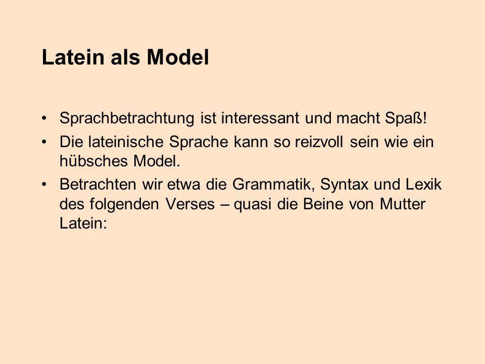 Latein als Model Sprachbetrachtung ist interessant und macht Spaß!