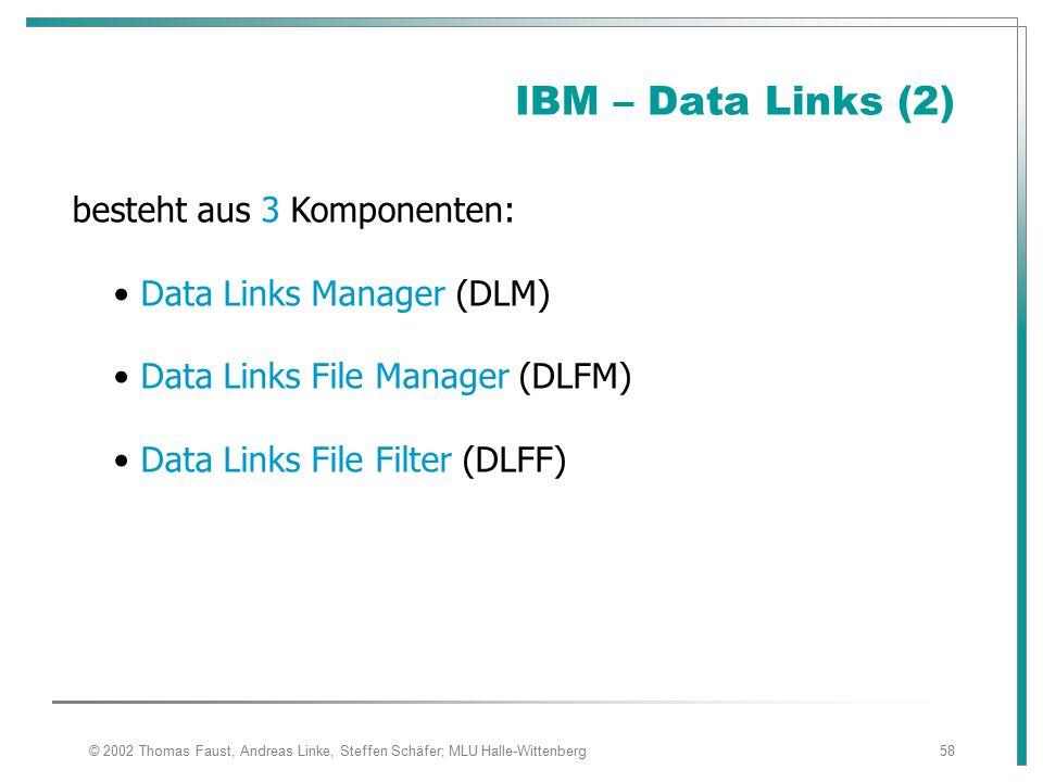 IBM – Data Links (2) besteht aus 3 Komponenten: