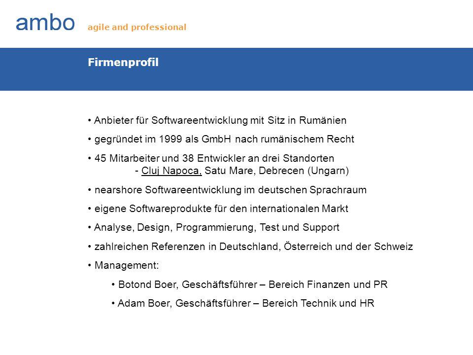 Anbieter für Softwareentwicklung mit Sitz in Rumänien