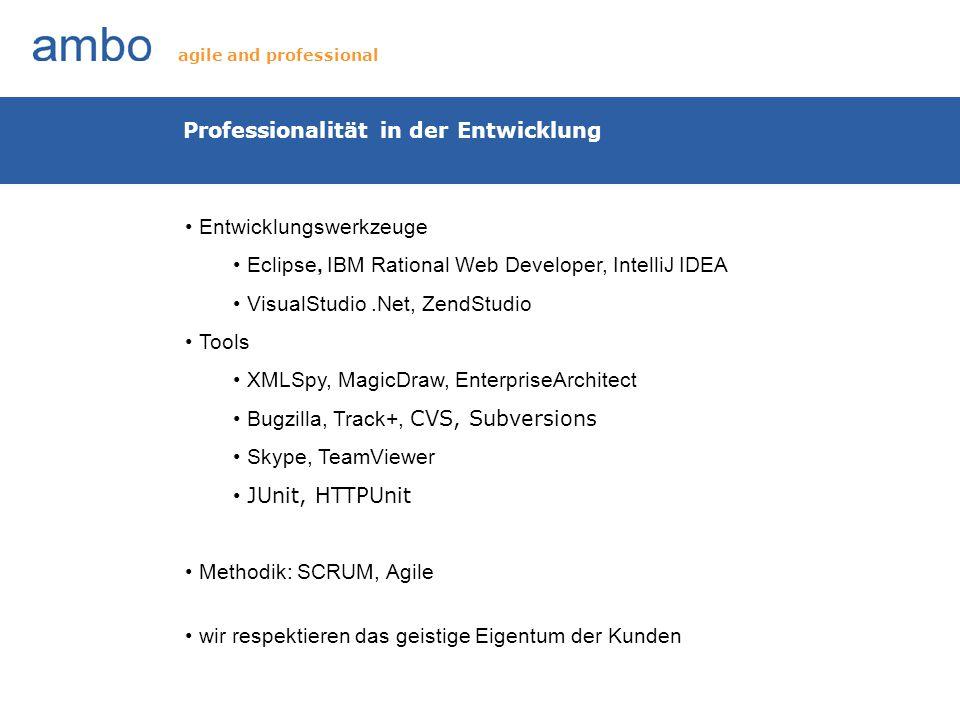 Professionalität in der Entwicklung