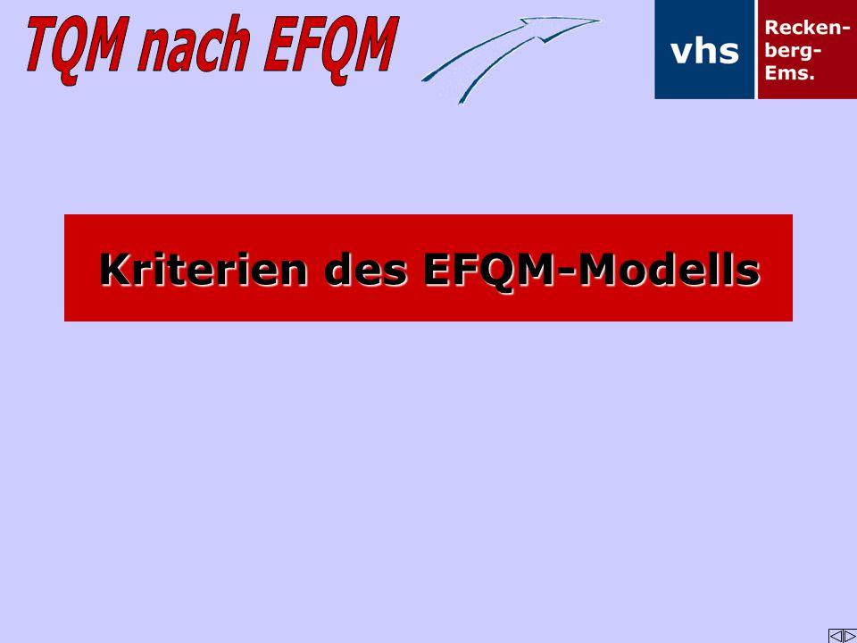 Kriterien des EFQM-Modells