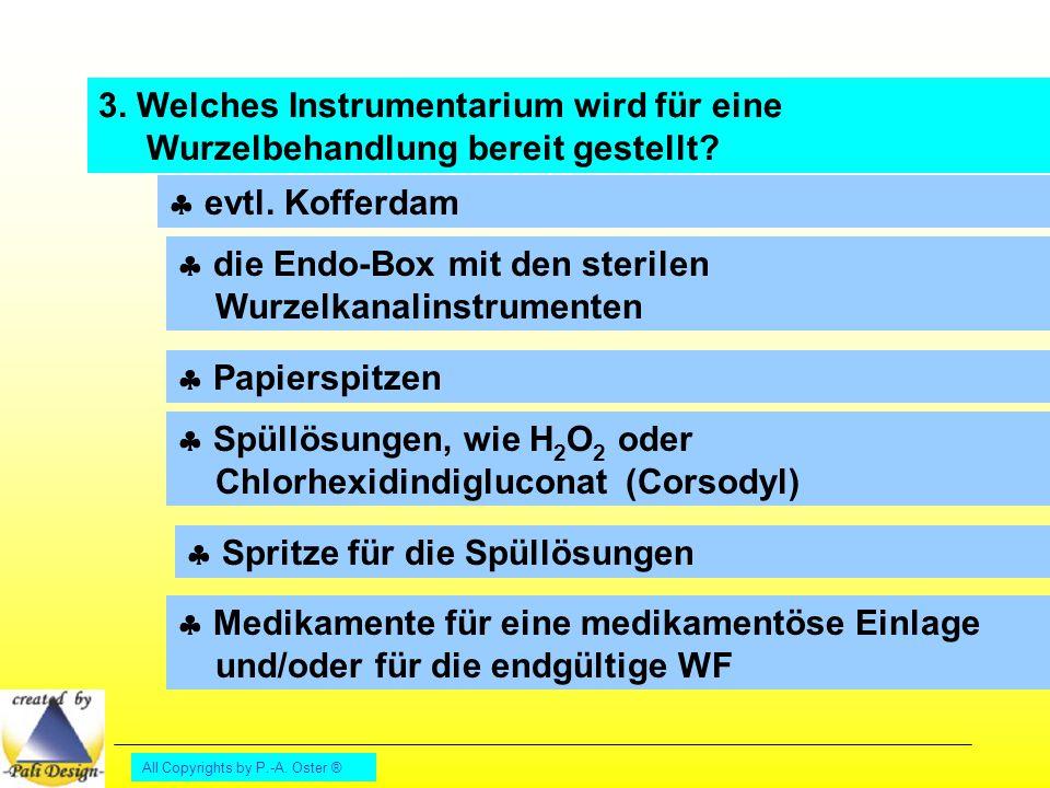  die Endo-Box mit den sterilen Wurzelkanalinstrumenten