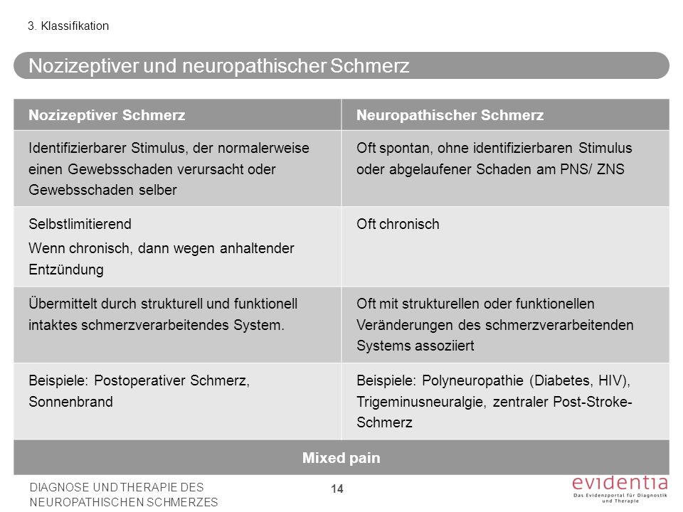 Nozizeptiver und neuropathischer Schmerz