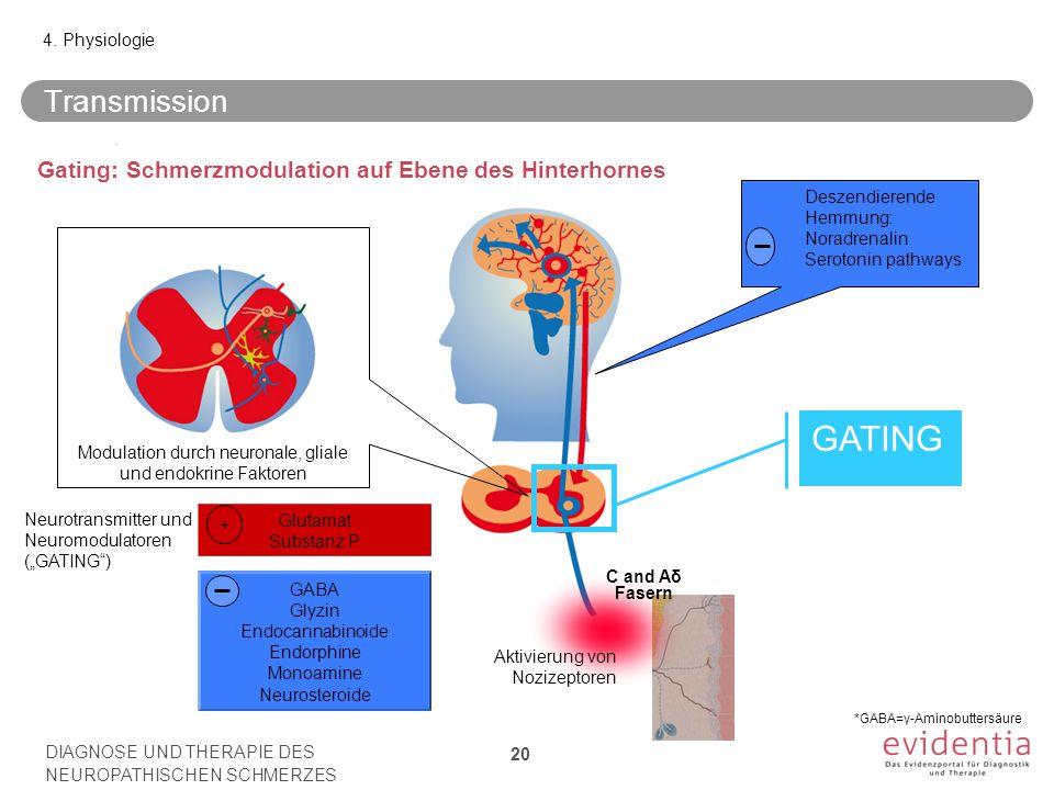 Modulation durch neuronale, gliale und endokrine Faktoren