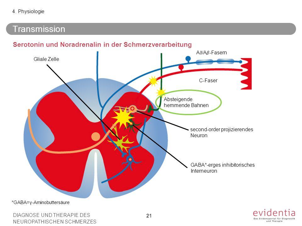 Transmission Serotonin und Noradrenalin in der Schmerzverarbeitung