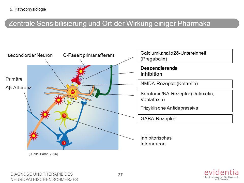 Zentrale Sensibilisierung und Ort der Wirkung einiger Pharmaka