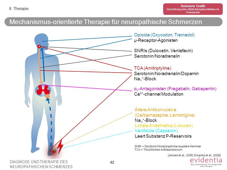 Mechanismus-orientierte Therapie für neuropathische Schmerzen