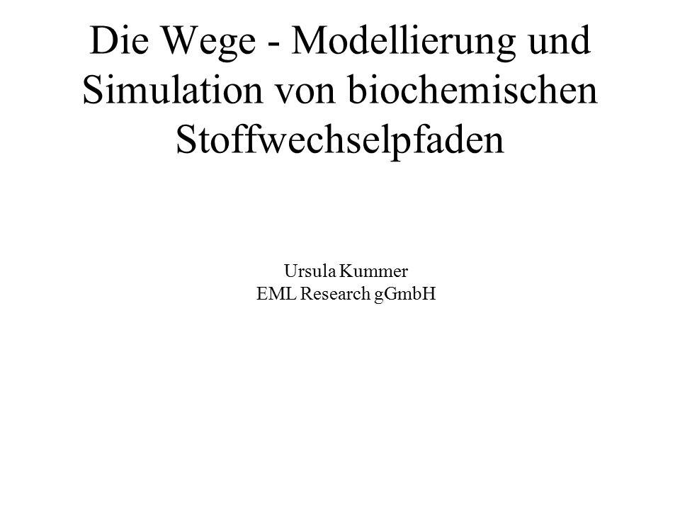 Die Wege - Modellierung und Simulation von biochemischen Stoffwechselpfaden