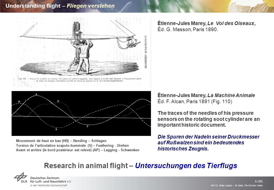 Understanding flight – Fliegen verstehen