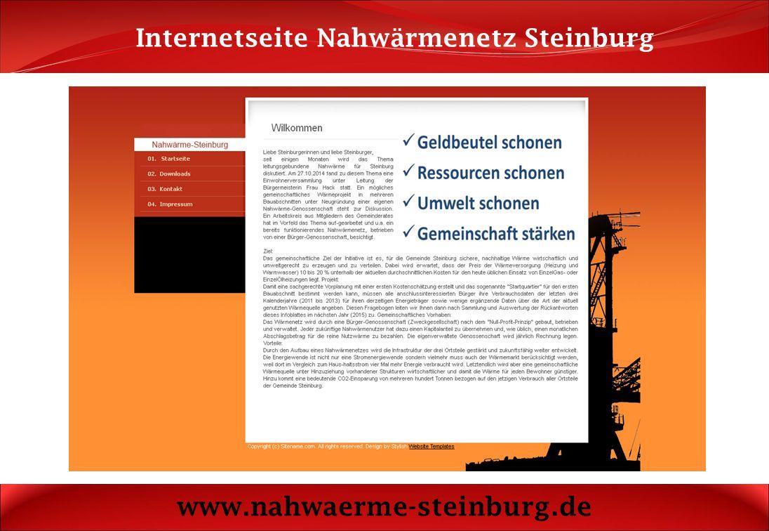 Internetseite Nahwärmenetz Steinburg