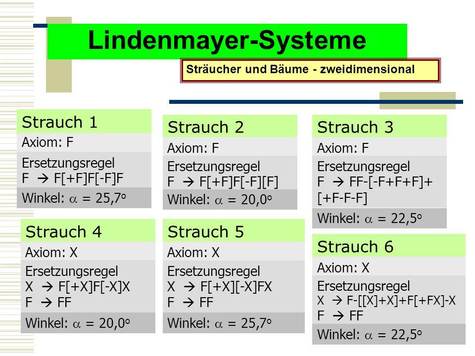 Lindenmayer-Systeme Strauch 1 Strauch 2 Strauch 3 Strauch 4 Strauch 5