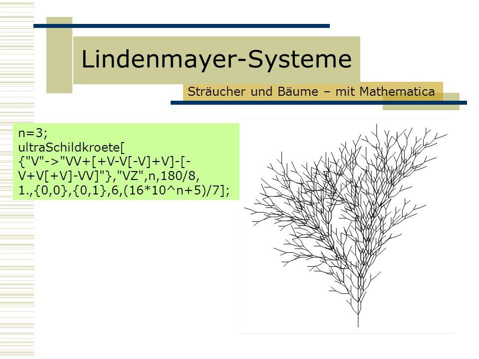 Lindenmayer-Systeme Sträucher und Bäume – mit Mathematica n=3;
