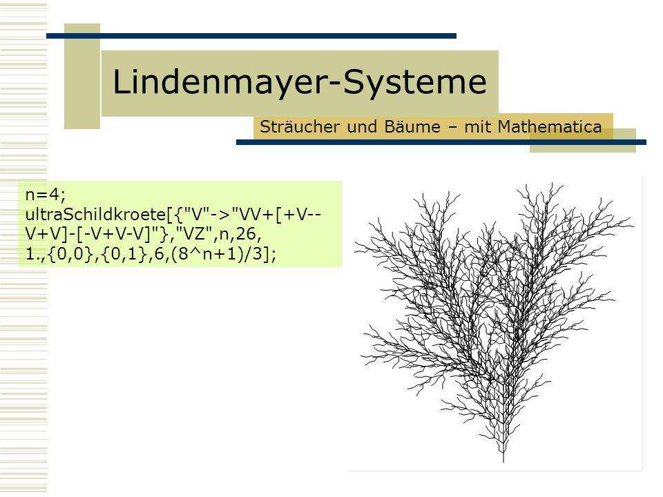 Lindenmayer-Systeme Sträucher und Bäume – mit Mathematica n=4;