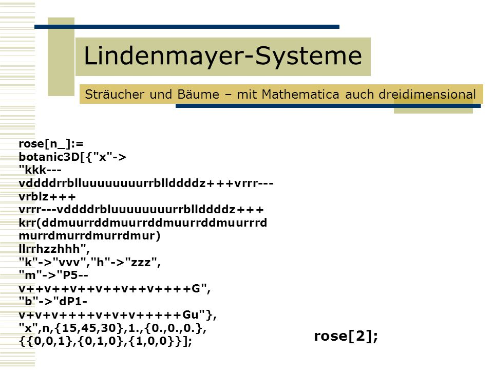 Lindenmayer-Systeme rose[2];