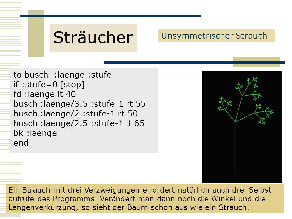 Sträucher Unsymmetrischer Strauch to busch :laenge :stufe