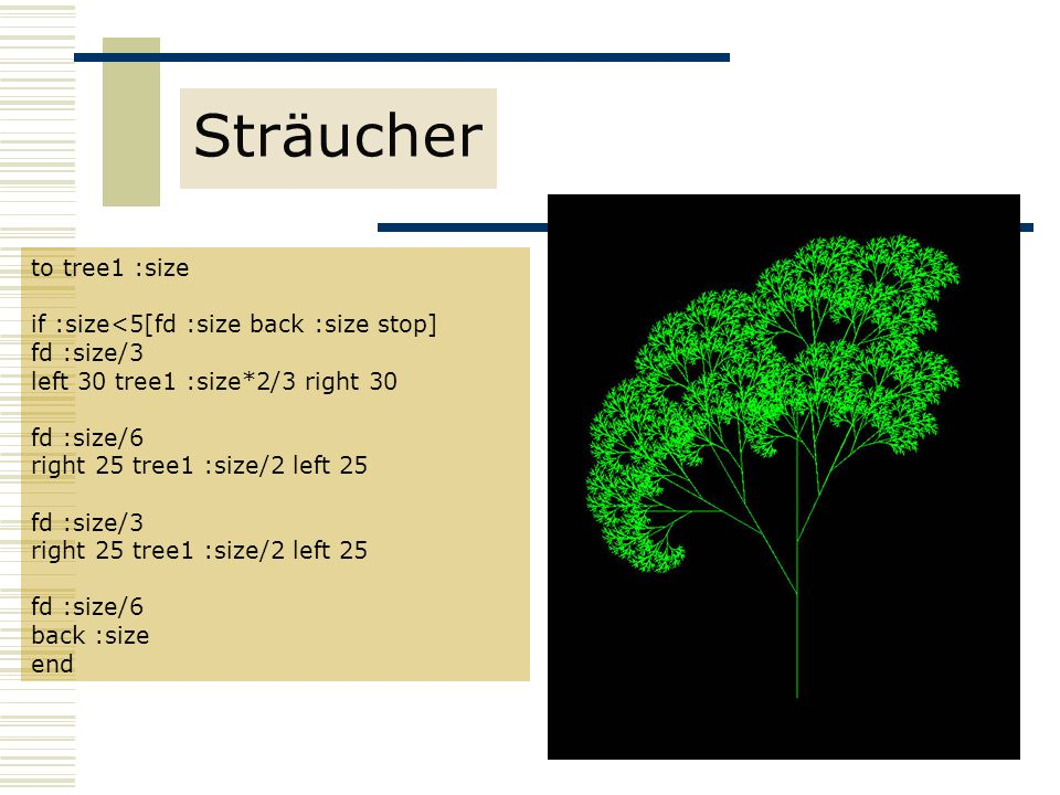 Sträucher to tree1 :size if :size<5[fd :size back :size stop]
