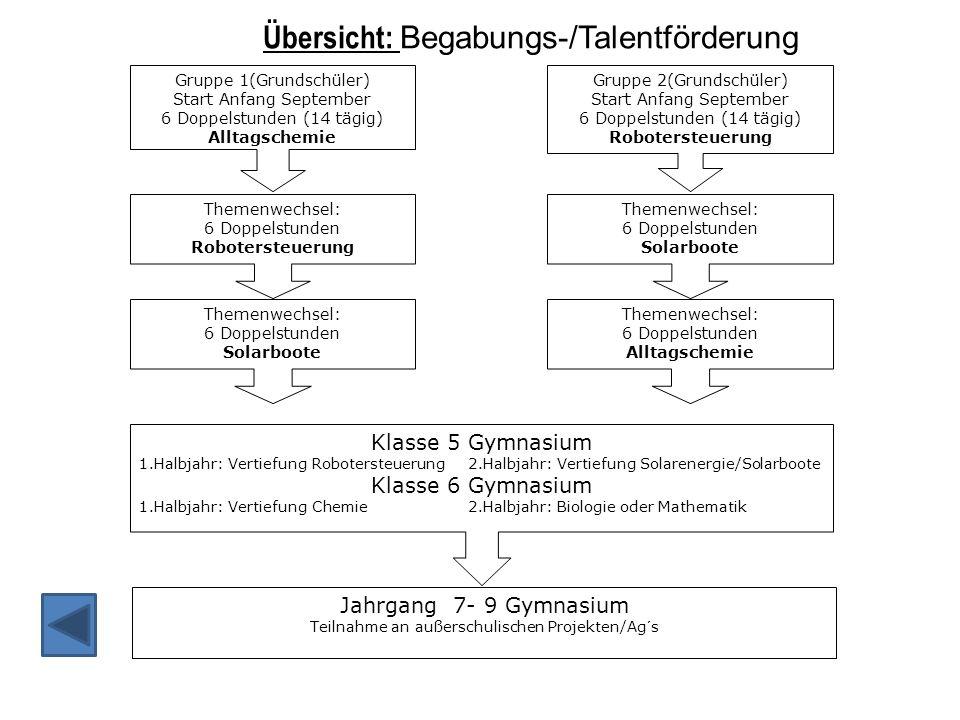 Übersicht: Begabungs-/Talentförderung