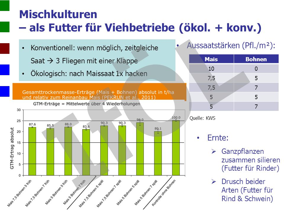 Mischkulturen – als Futter für Viehbetriebe (ökol. + konv.)