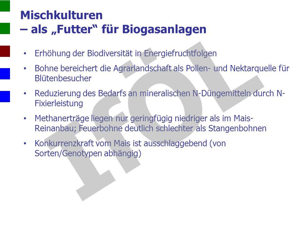 """Mischkulturen – als """"Futter für Biogasanlagen"""