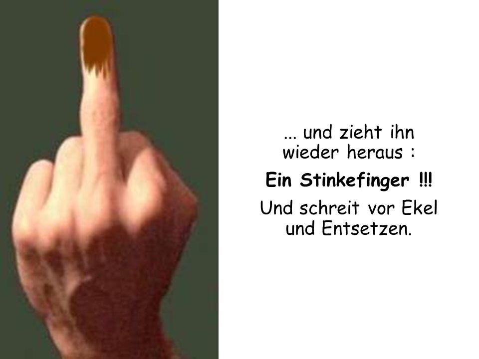 ... und zieht ihn wieder heraus : Ein Stinkefinger !!!