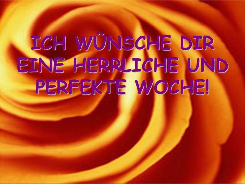 EINE HERRLICHE UND PERFEKTE WOCHE!