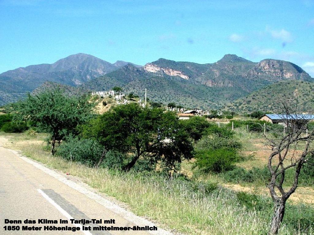 Denn das Klima im Tarija-Tal mit
