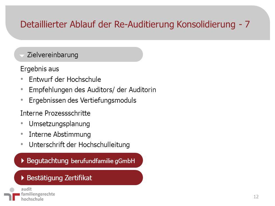Detaillierter Ablauf der Re-Auditierung Konsolidierung - 7