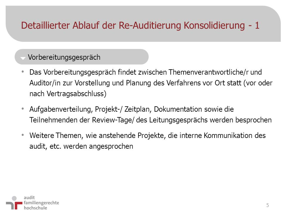 Detaillierter Ablauf der Re-Auditierung Konsolidierung - 1
