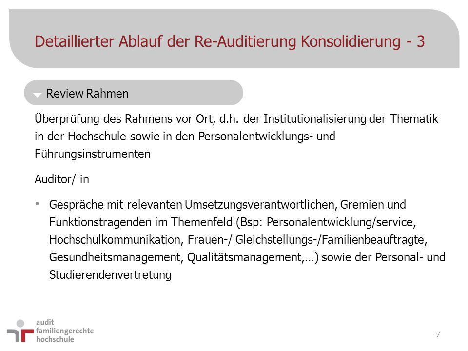 Detaillierter Ablauf der Re-Auditierung Konsolidierung - 3