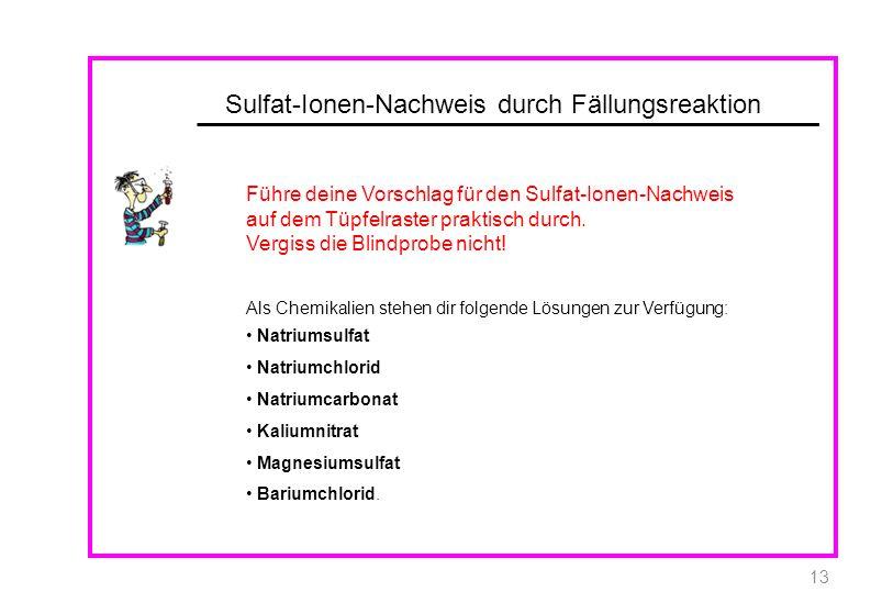 Sulfat-Ionen-Nachweis durch Fällungsreaktion