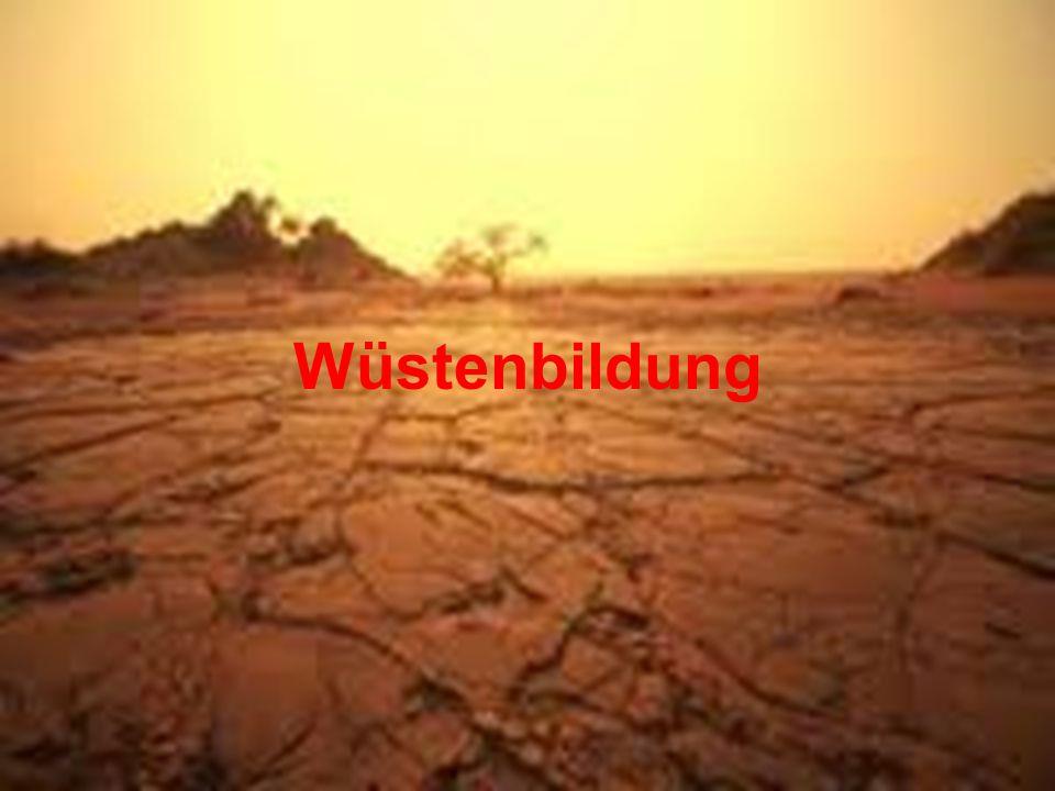 Wüstenbildung