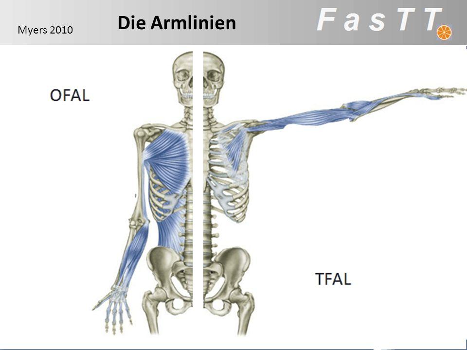 Die Armlinien Myers 2010 OFAL
