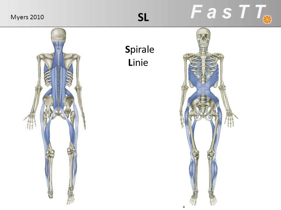 LL SL Myers 2010 Spirale Linie