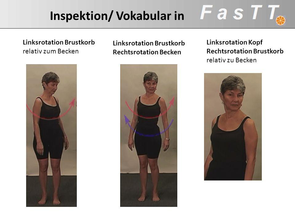 Inspektion/ Vokabular in