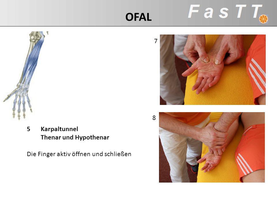 OFAL 7. 8. 5 Karpaltunnel Thenar und Hypothenar Die Finger aktiv öffnen und schließen.