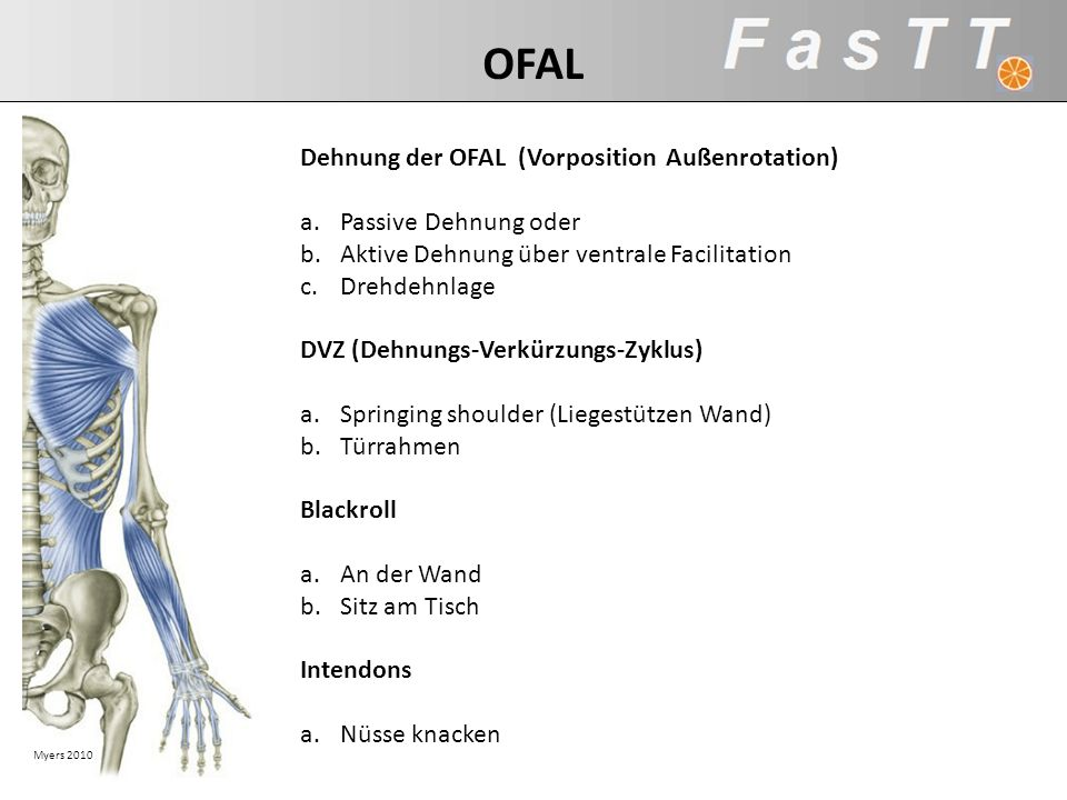 OFAL Dehnung der OFAL (Vorposition Außenrotation) Passive Dehnung oder
