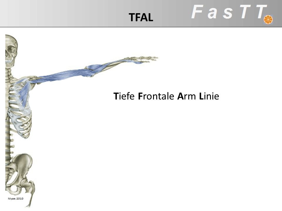 Tiefe Frontale Arm Linie