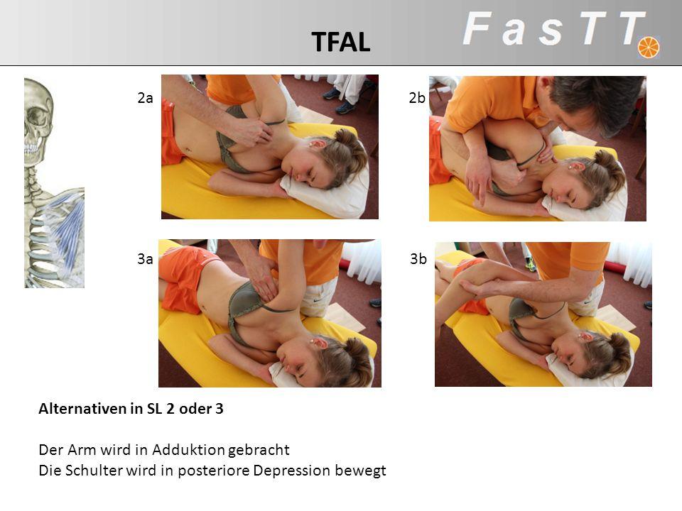 TFAL 2a 2b 3a 3b Alternativen in SL 2 oder 3