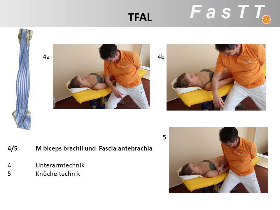 TFAL 4a 4b 5 4/5 M biceps brachii und Fascia antebrachia