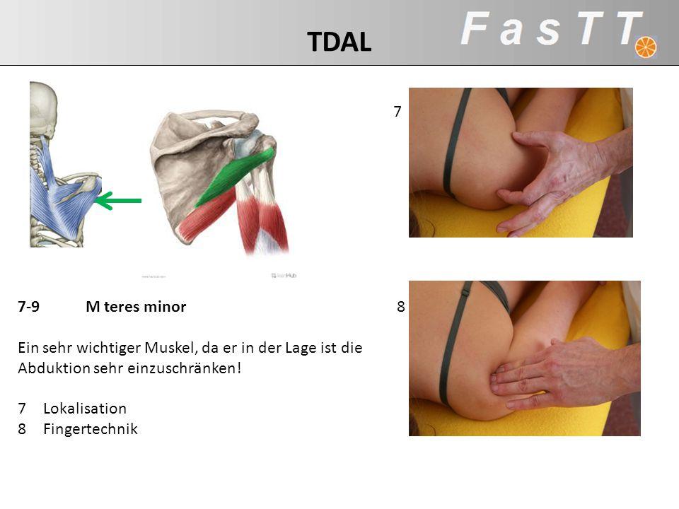 TDAL 7. 7-9 M teres minor. Ein sehr wichtiger Muskel, da er in der Lage ist die. Abduktion sehr einzuschränken!