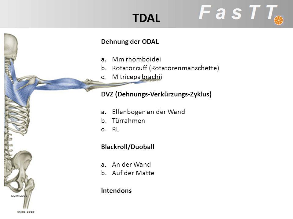 TDAL Dehnung der ODAL Mm rhomboidei Rotator cuff (Rotatorenmanschette)