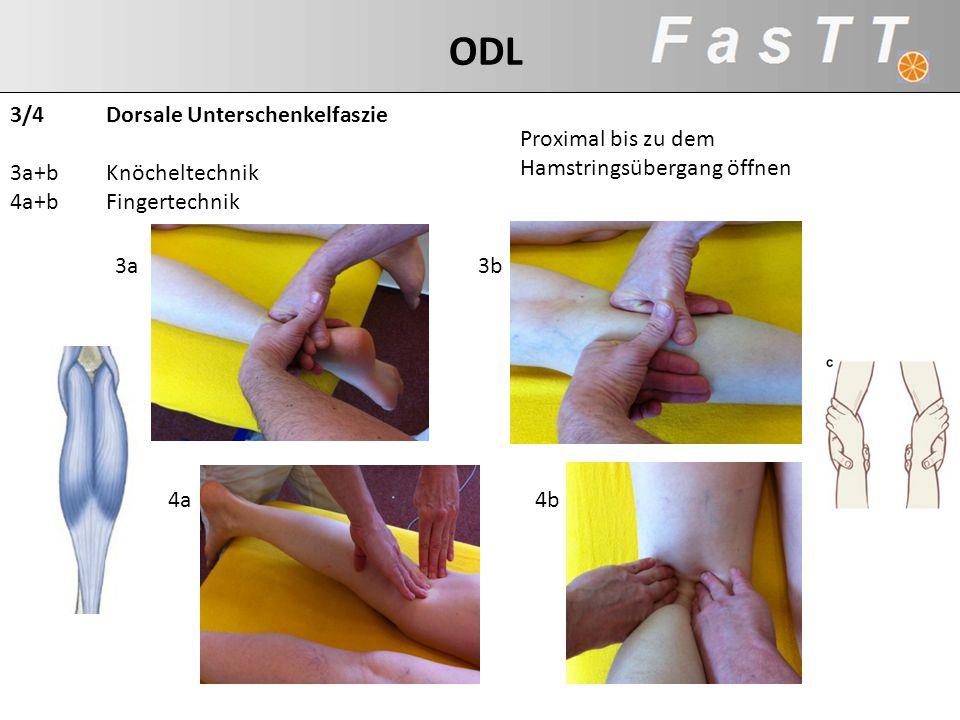 3/4 Dorsale Unterschenkelfaszie 3a+b Knöcheltechnik 4a+b Fingertechnik