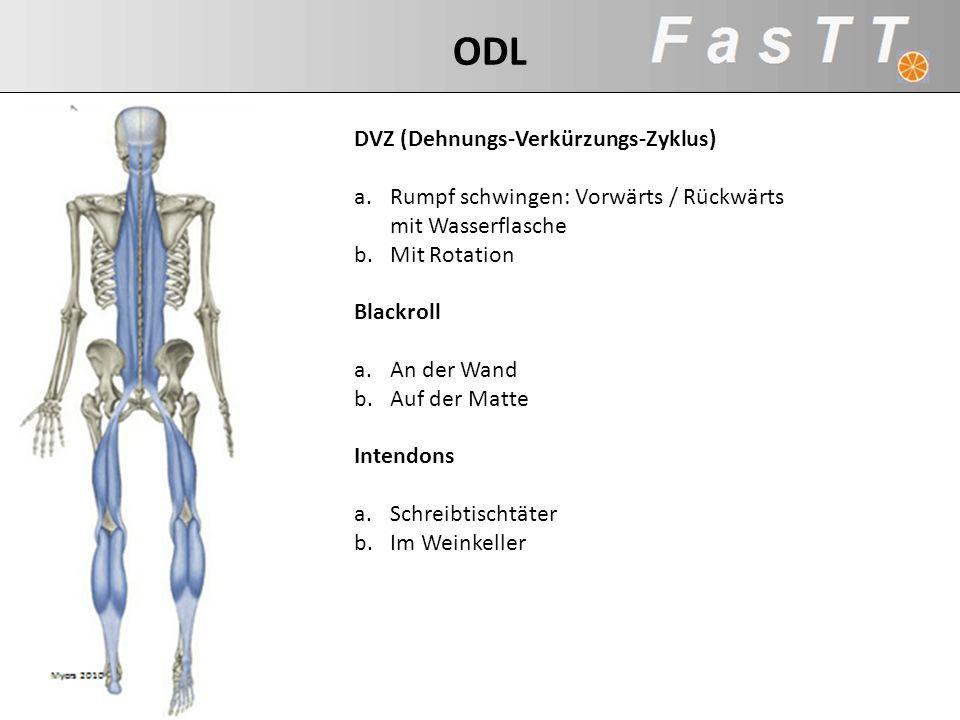 ODL DVZ (Dehnungs-Verkürzungs-Zyklus)