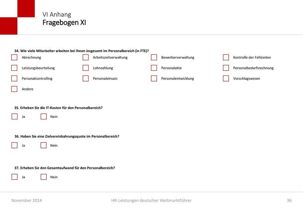 VI Anhang Fragebogen XI